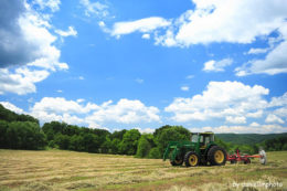 Polska wieś dostanie więcej pieniędzy – WPR na lata 2014-2020
