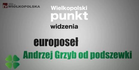 Andrzej Grzyb od podszewki