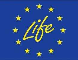 """Unijny program """"Life"""" – działania na rzecz klimatu"""