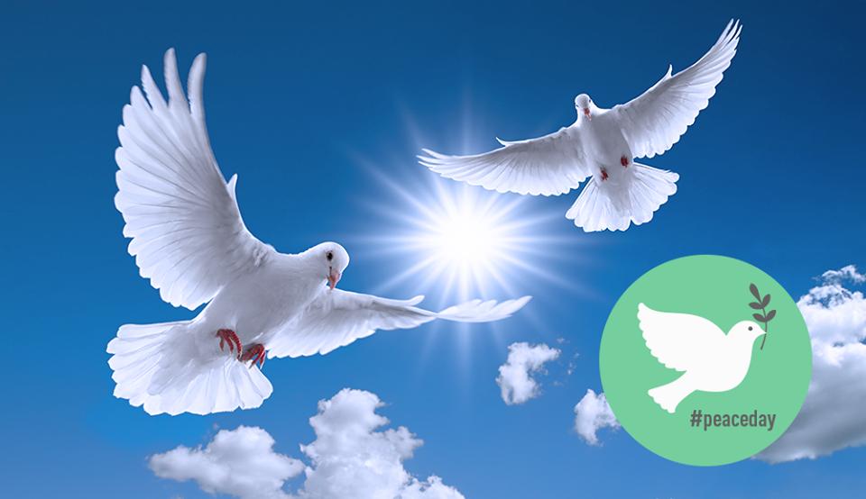 międzynarodowy_dzień_pokoju