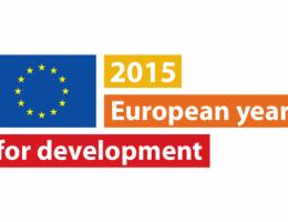 Andrzej Grzyb w debacie nt. Europejskiego Roku na rzecz Rozwoju