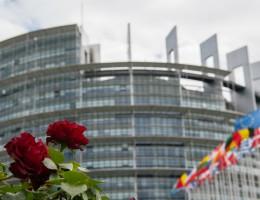 Lipcowa sesja plenarna – trzy wystąpienia w kluczowych dyskusjach