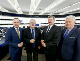 #100 dni do wyborów do Parlamentu Europejskiego