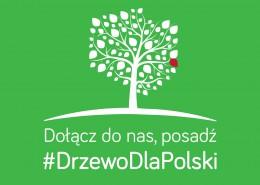 Zasadź #DrzewoDlaPolski
