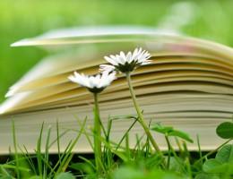 Dzień Edukacji Narodowej – Życzenia