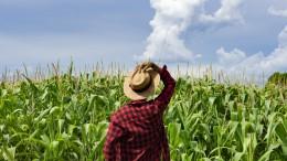 Europejski Kongres Młodych Rolników w PE