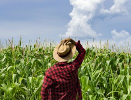 V Europejski Kongres Młodych Rolników