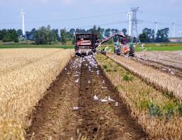 Uproszczona i sprawiedliwsza polityka rolna w UE