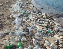 Walka z plastikami – strategia Komisji Europejskiej tematem obrad w Strasburgu