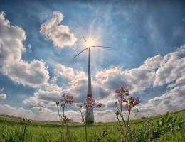 Parlament Europejski zagłosuje ws. celów OZE i biopaliw na rok 2030