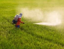 Komisja specjalna ds. pestycydów