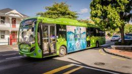 Grzyb: Czysty transport zaczyna się od autobusów