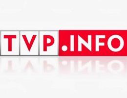 Andrzej Grzyb w TVP INFO