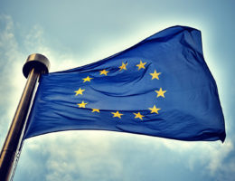 FLAGOWY PROJEKT POLSKIEJ PREZYDENCJI – FUNDACJA NA RZECZ DEMOKRACJI, EUROPEAN ENDOWMENT FOR DEMOCRACY,
