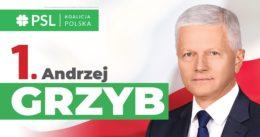 Wybory do Sejmu RP 2019
